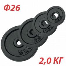 GBS14122 Блин крашеный (черный) (d 26 мм)  2,0 кг.