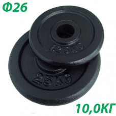 BHPL101-D26 Блин крашенный (черный) (d26мм)  10 кг.
